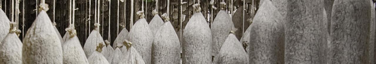 Bildausschnitt mehrerer klassischer Salamistangen der Salamispezialitäten von PICK original ungarische Salami in Originalverpackung.
